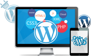 Best WordPress Development Services by MT Web Sol