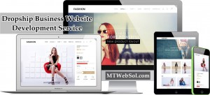 Dropshipping Store Development Service by MT Web Sol