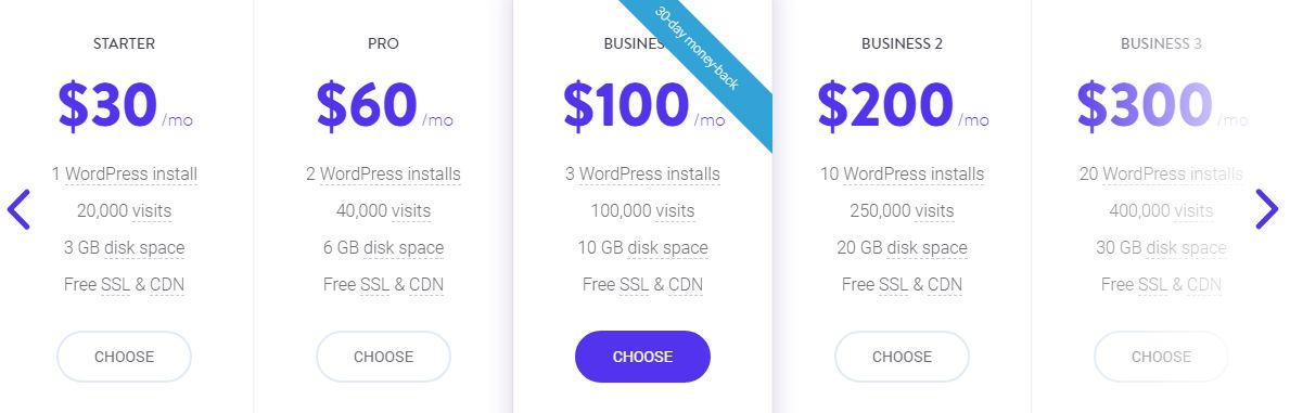 best managed wordpress woocommerce web hosting kinsta package details mt web sol