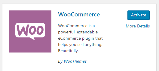 How to Start an eCommerce Online Store Using WordPress in 2020?